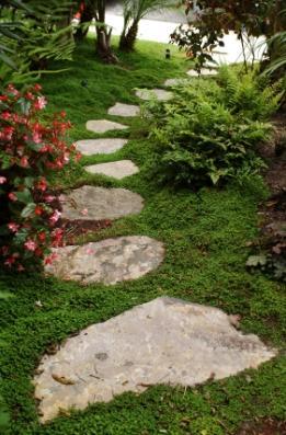 garden stepping stones  59