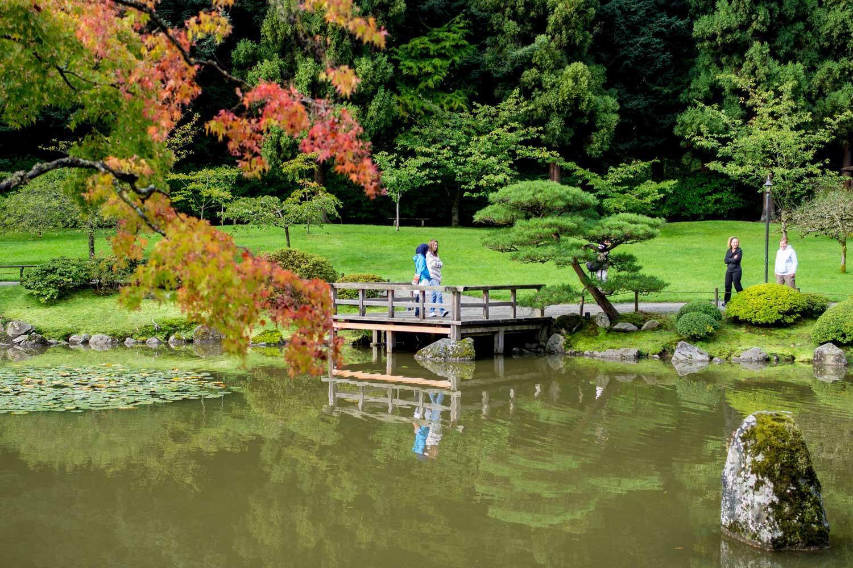 Japanese garden  35