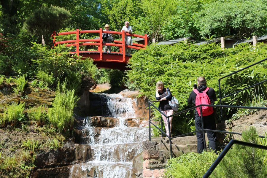 Japanese garden  92