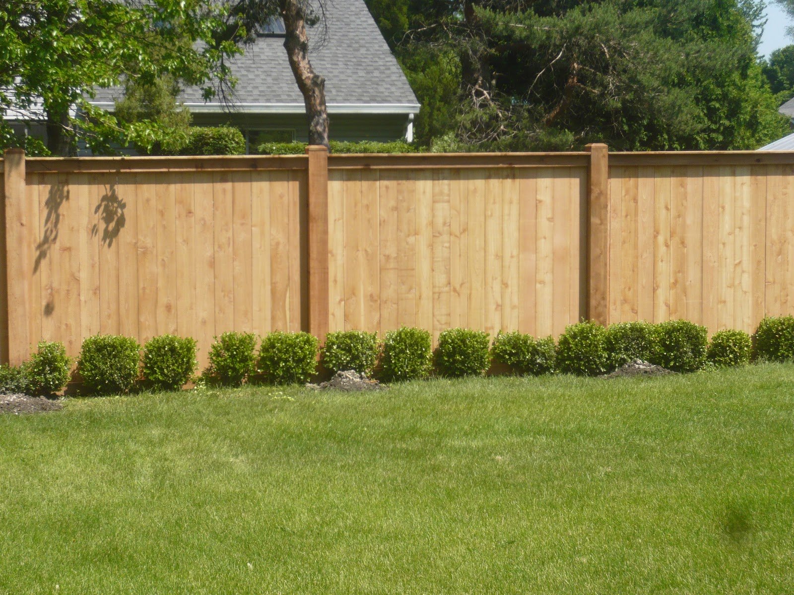 Innovative ideas for your backyard fence – CareHomeDecor