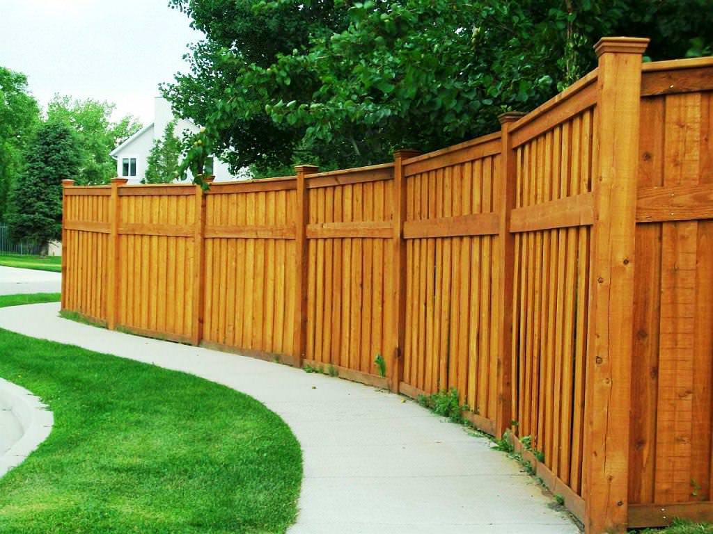 Innovative ideas for your backyard fence carehomedecor for Decorative fence ideas