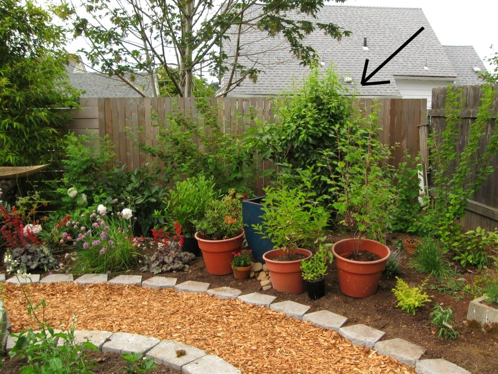Top 28 easy landscape ideas low maintenance backyard for Easy to care for landscaping ideas