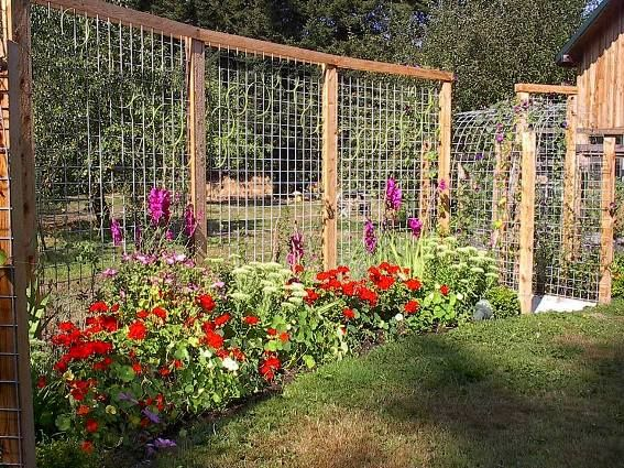 Make Your Garden Fantastic By Fencing The Best Garden Fence U2013 CareHomeDecor