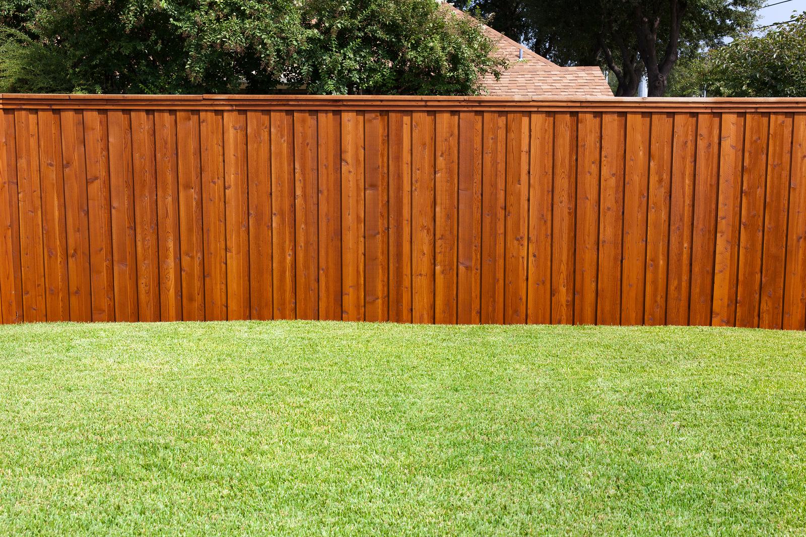 backyard fence  30