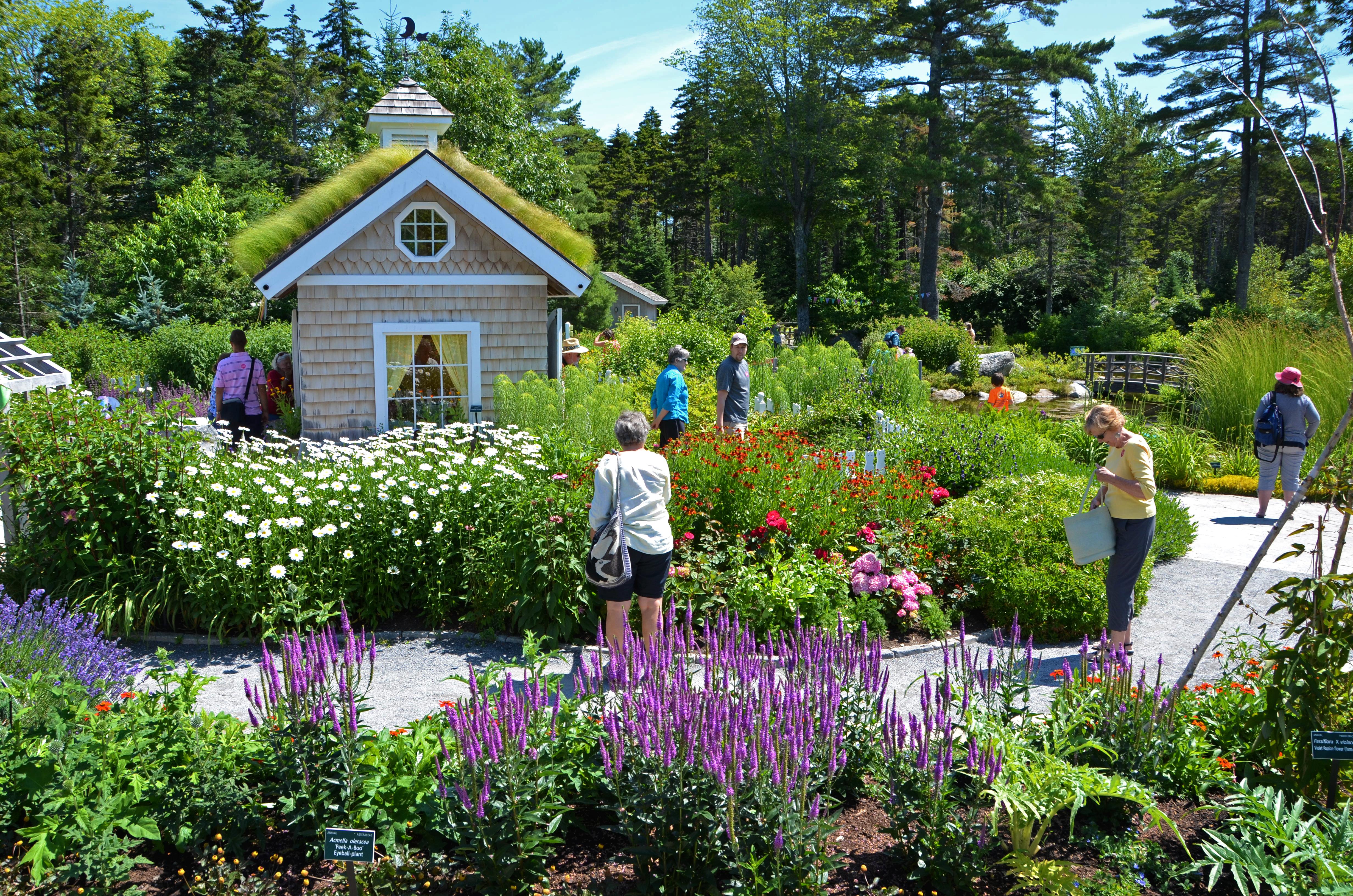 Botanical gardens  45