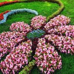 Make antique garden with Flower bed designs