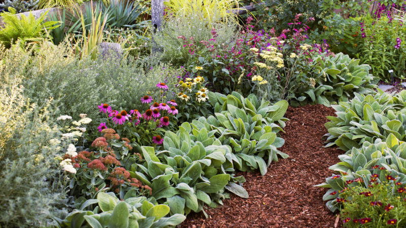 Flower bed ideas  18