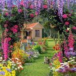 Flower gardens with various types of flowers
