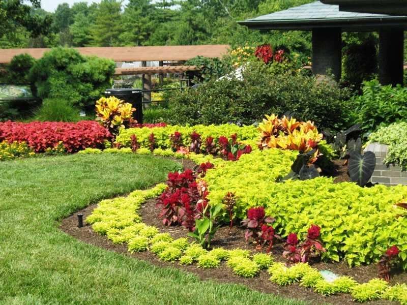Garden landscape  52