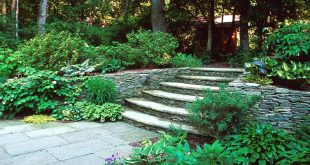 Hardscape design ideas 62