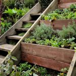 Make your garden more useful with herb garden ideas