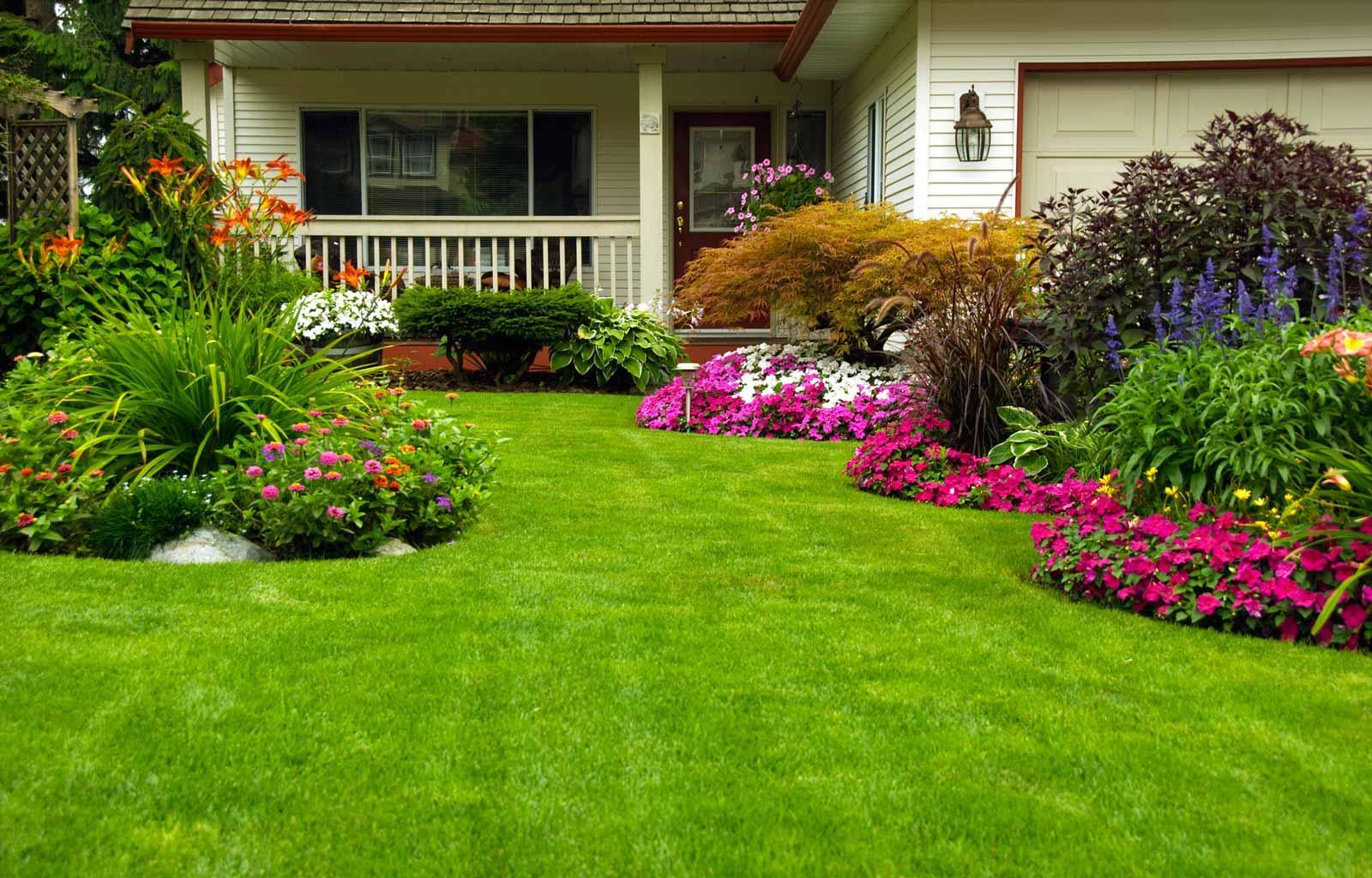home gardening  59