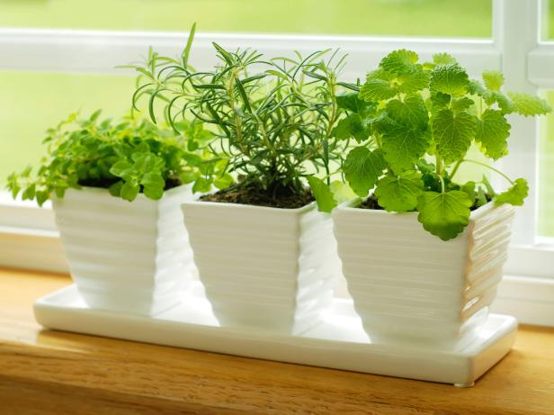 indoor herb garden  71
