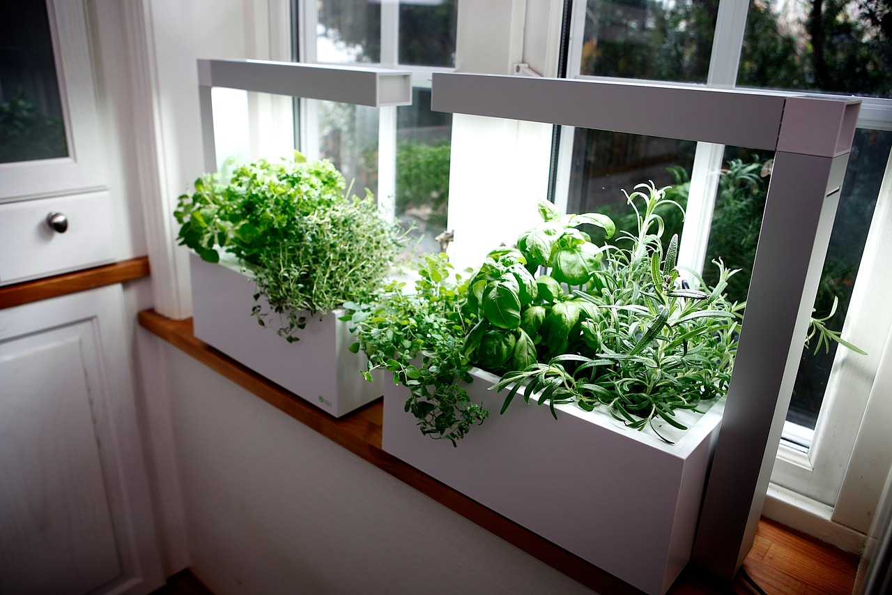 indoor herb garden  92