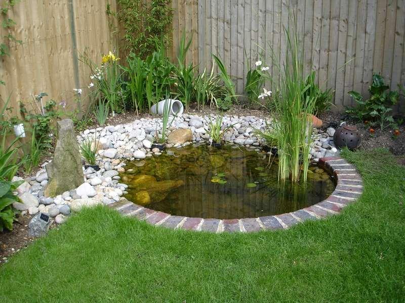 pond designs  00