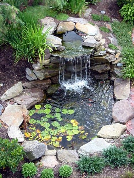 pond designs  91