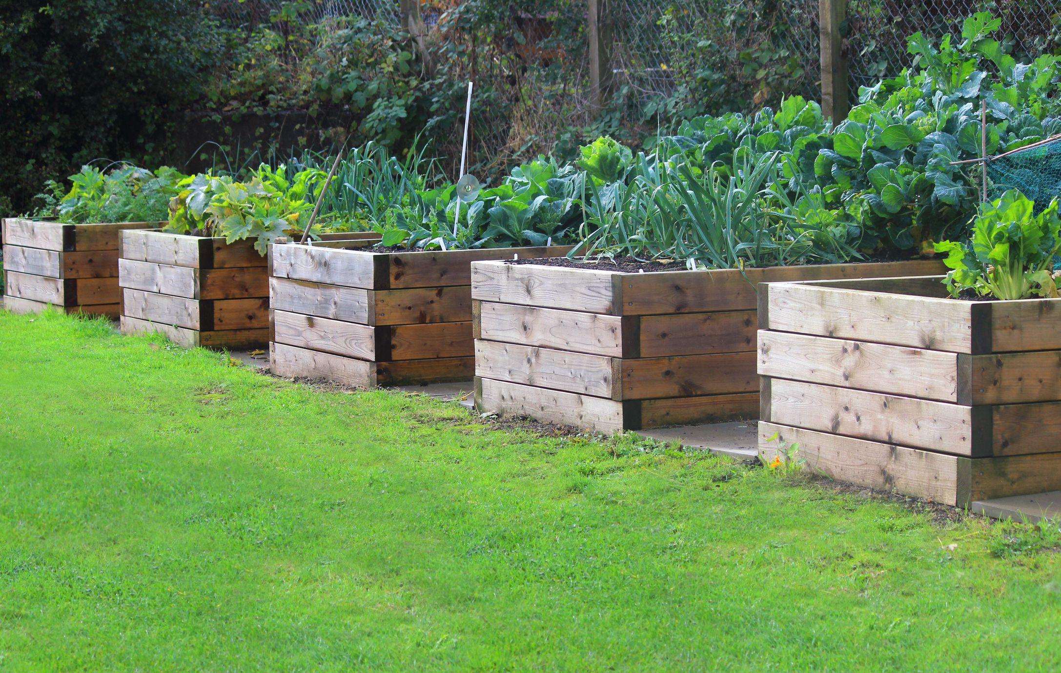 Raised Bed Garden  28