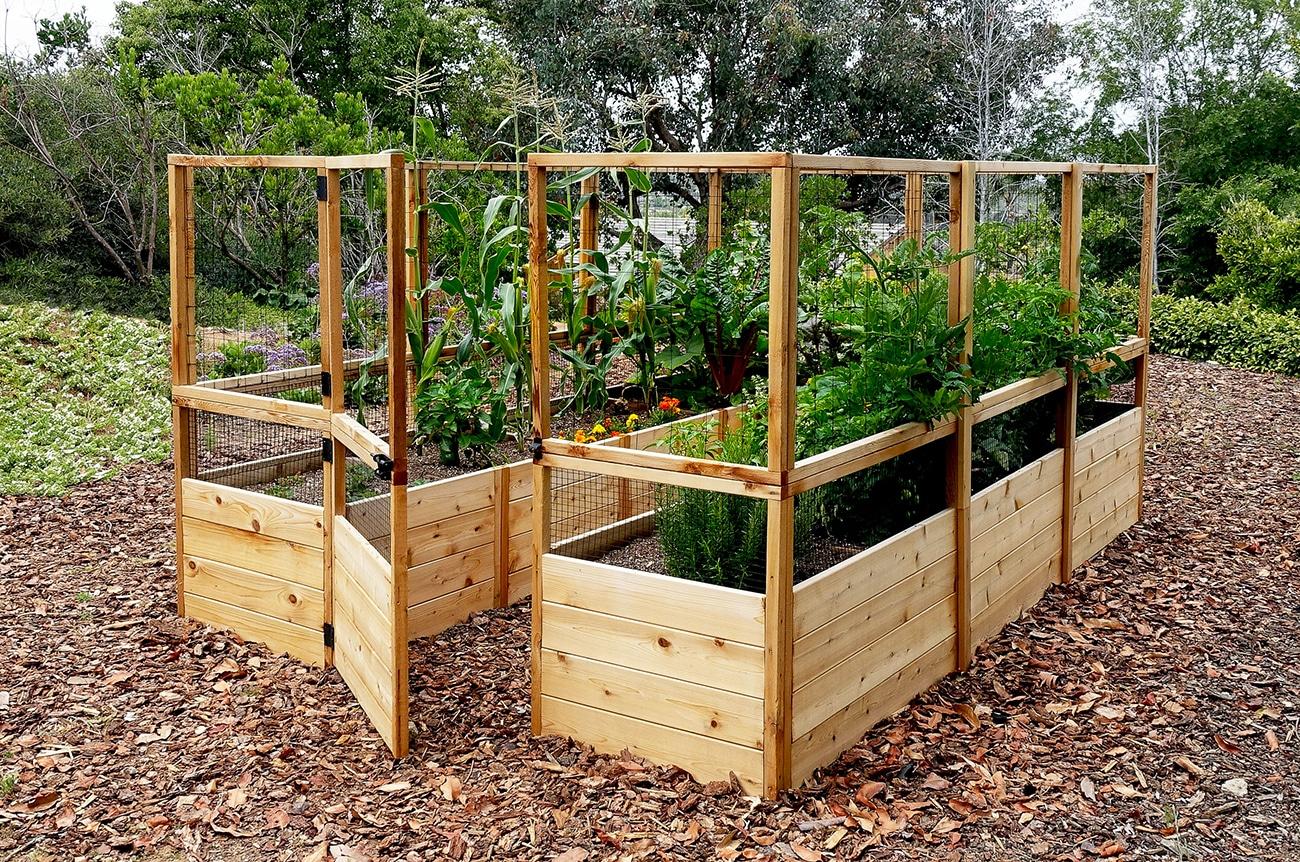 raised garden bed  71