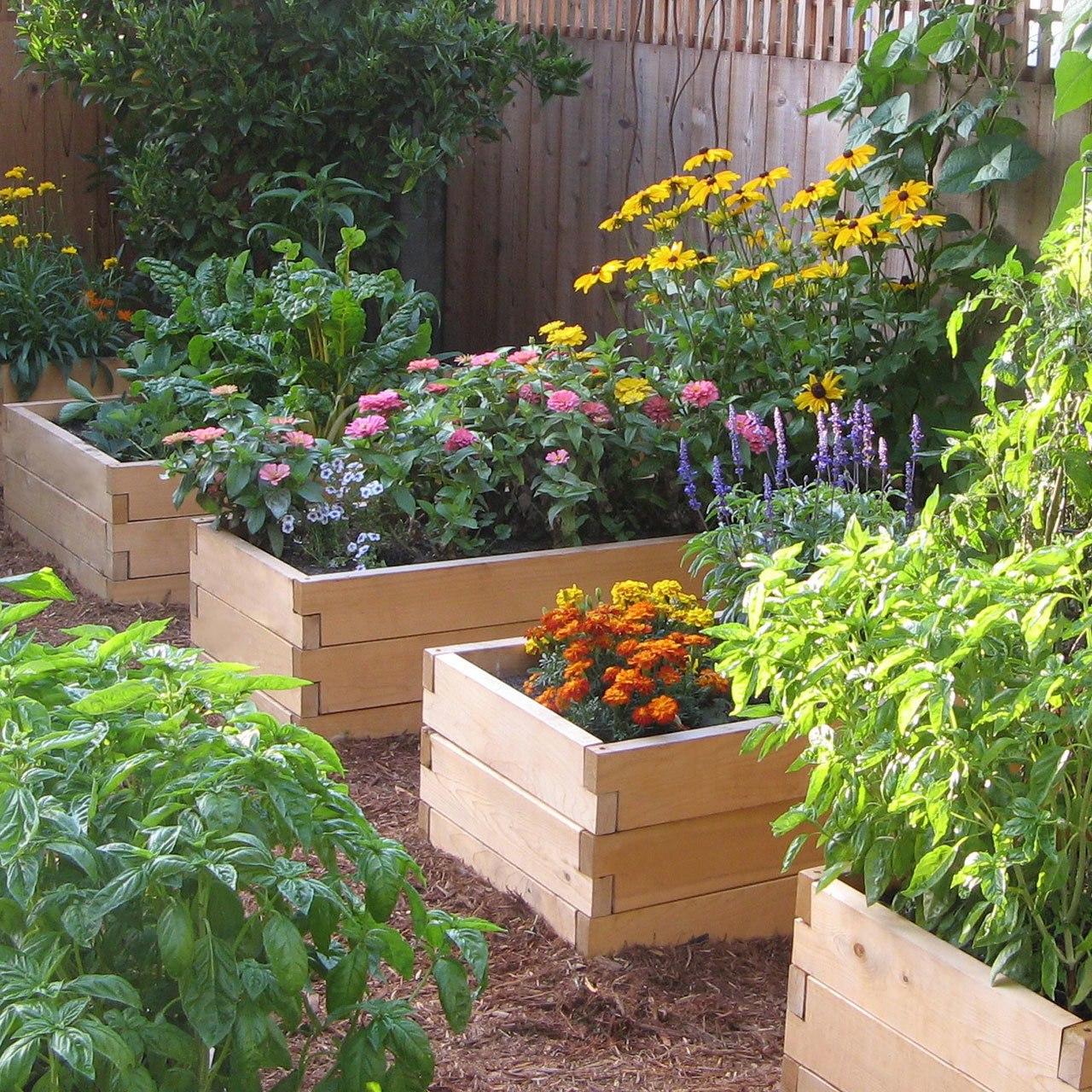 raised garden bed  87
