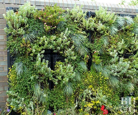 vertical gardening  26