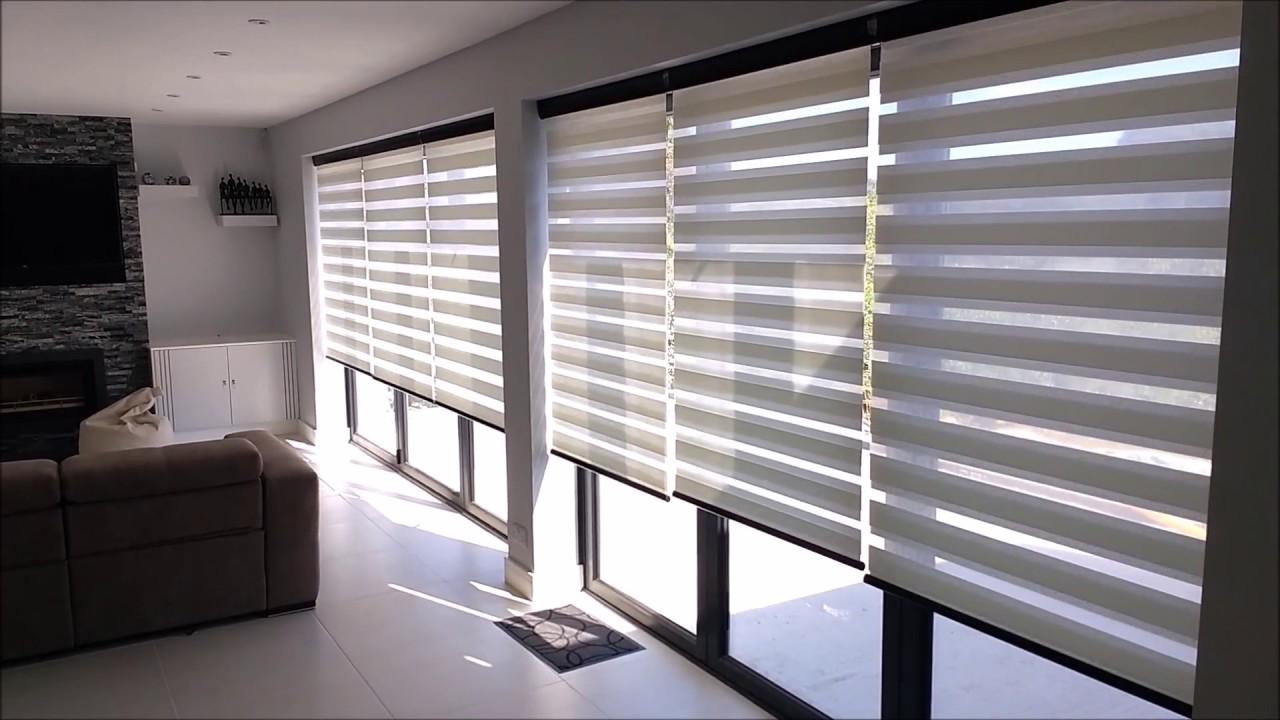 vision blinds  58