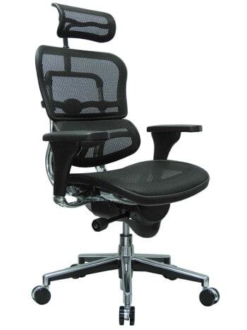 Ergohuman High Back Swivel Ergonomic Office Chair with Headrest