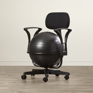 Ergo Ball Chair | Wayfair